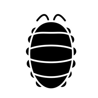 Wormwood beetle
