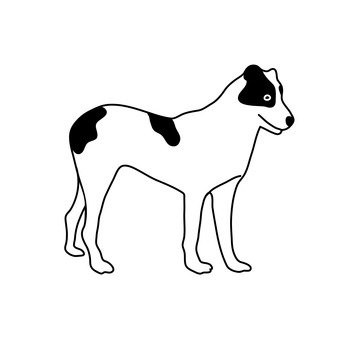 Smooth · Fox · Terrier