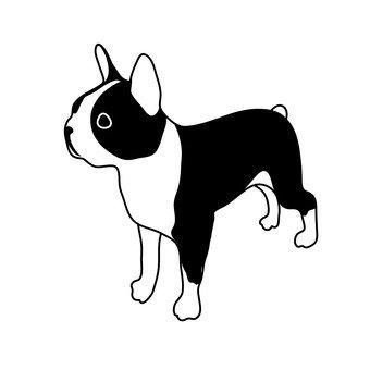 法國鬥牛犬