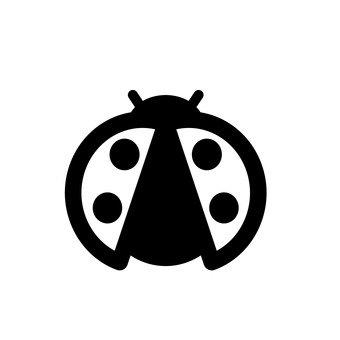 무당 벌레