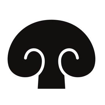 버섯의 단면
