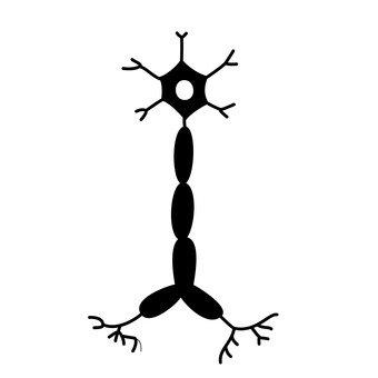 신경 세포