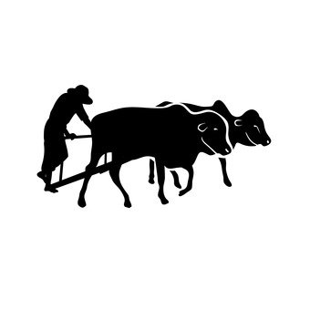 Cattle and horses