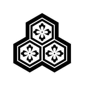 패턴 카메이