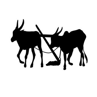 가축 농업