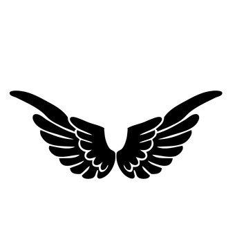 lông chim