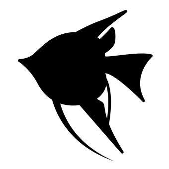 الأسماك الاستوائية