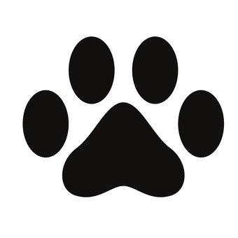 강아지의 발자취